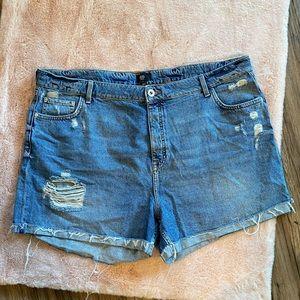 River Island Plus Size Denim Shorts